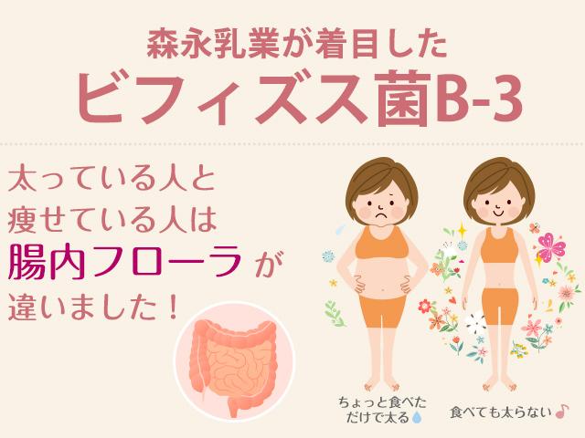 森永乳業が着目したビフィズス菌B-3!太っている人と痩せている人は腸内フローラが違いました!