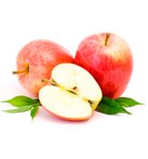 りんご幹細胞