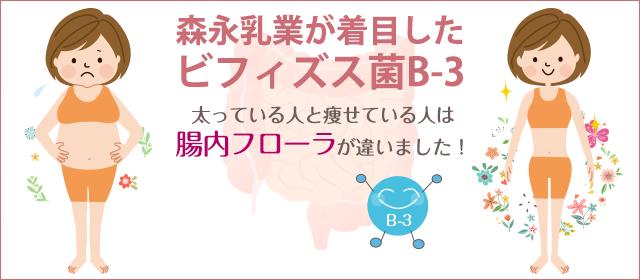 森永乳業が着目したビフィズス菌B-3とは?