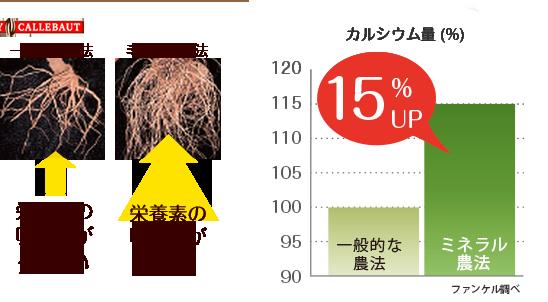 栄養素の吸収量が多いミネラル農法