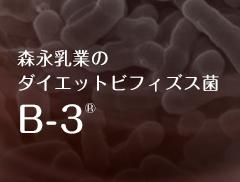 森永乳業ダイエットビフィズス菌ビースリー