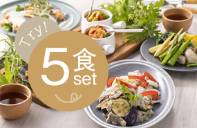 STYLE DELI®お試し5食セット